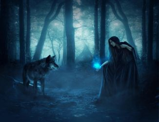 Speaking with wolves by OksanaMo