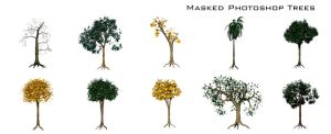 Masked Photoshop Trees by thesuper
