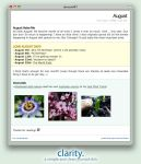 Clarity Journal CSS 0.2 by Solitude12