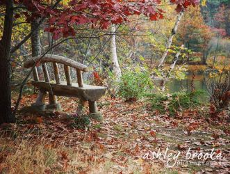 -- Sit and Stay Awhile -- by AshleyxBrooke