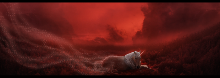 the last unicorn by onefinalkissx