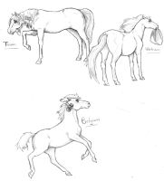 More Hetalia Mares by nightwindwolf95