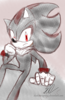 1 Hour Sonic: Shadow The Hedgehog by ShadowReaper12
