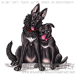 Lupin And Nina Commission by WildSpiritWolf