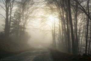Along the Road by LG77