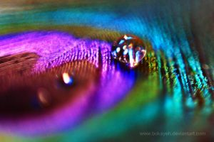 Iridescent by bokayeh