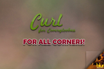 Curl for Covergloobus by Theconso