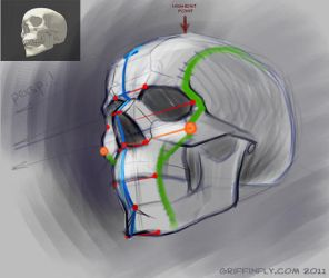 human skull - sketch tutorial by OlgaDrebas