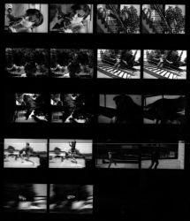 Motion Contact Sheet by digitalblue