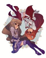 Fire Emblem: Awakening - Cordelia and Sumia by paper-hero