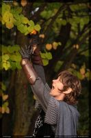 Peregrin and the apple by Rollwurst