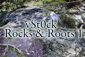 Texture Pack: Rocks and Roots 1 by vSt0ck