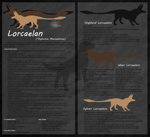 Lorcaelan Species Reference by EncounterEthereal