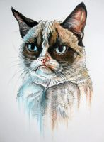 Tard the Grumpy Cat by Miimochi