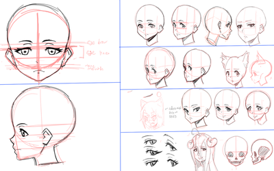 DarkLored's Practice Sheets: Head Proportions by DarkLored123