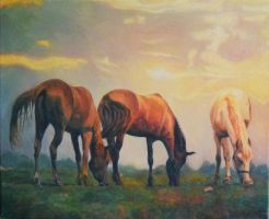 Mustangs by anna36