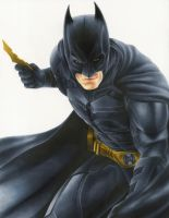 TDK Batman by smlshin