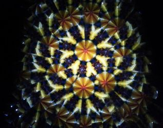 Kaleidoscope Flowers III by TheDreamsOfTheAges