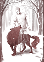 TeenWolf FanArt: Winter Howl by NinaKask