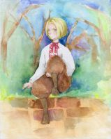 APH Poland by Ayuanlv