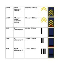 Systems Alliance Military Ranks-3 by RIS-4