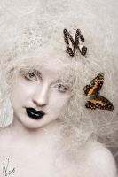 butterfly catcher 2 by Voodica