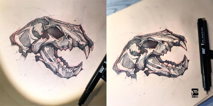 Lion Skull Sketch Psdelux by psdeluxe