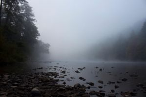 Misty River by Salamander-Stock