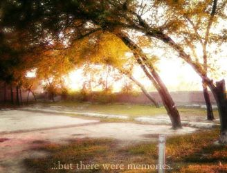 Memories...will always stay by cosmy