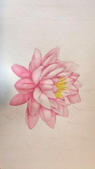 (Wip) Water Lily Water Colour by annierpcy