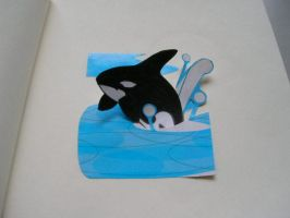 killerwhale by obojdite