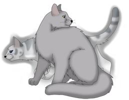 Dovewing and Ivypool by VampyKit