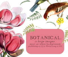 Textures 021: Botanical by flowersong