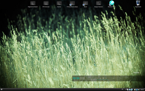 Desktop Screenshot July 2009 by CurtiXs