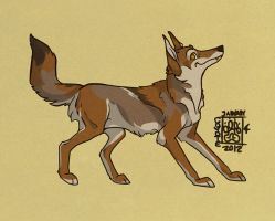 Coyote 2012 by Falcolf