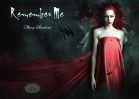 Pre designed Book Cover - Remember me by shiny-shadows-Art