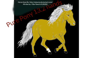 Pure Pony 13.2 hands PPP by Littlekitty09