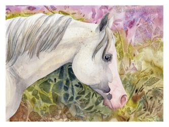 Gray - watercolor by jennyleigh