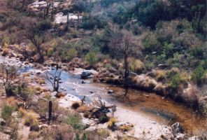 027 Stream - Sabino Canyon AZ by J2theStock