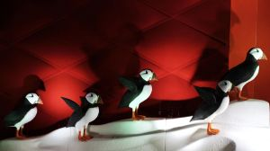 Pretty Little Puffins by Lust0fADeeperPain