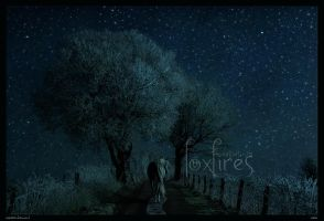 Solo by Foxfires