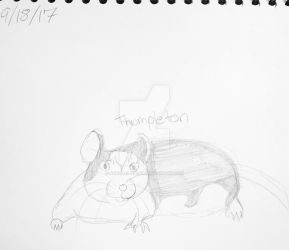 Thumpleton the Rat