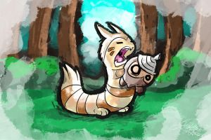 Furret's misconception