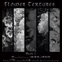 Flower Textures Pack 2 by BFstock