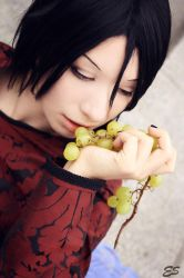 There is a Devil in Every Berry of the Grape by Kurimuzondorii