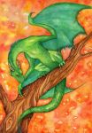 Dragon by Alexsiel