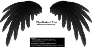 Simplistic Wing - Black by Thy-Darkest-Hour