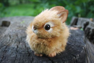 The Little Red Bunny [stuffed toy] by Irentoys