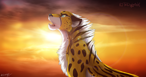 Lights Will Guide You by TheDaylightWolf