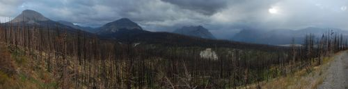 Scorched Glacier Forest 2007-08-20 by eRality